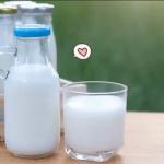 Inilah Manfaat Susu untuk Sistem Imun Tubuh
